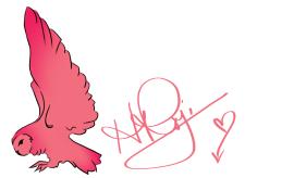 pink owl palette logo banner and designer signature rojin hamid